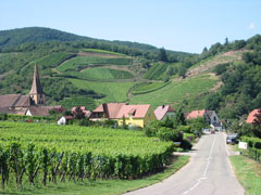Ermitage-du-rebberg-route-des-vins